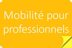 bouton-mobilite-professionnels